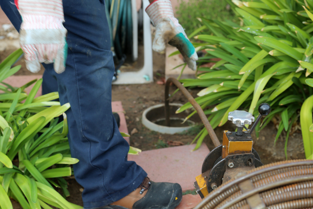 main sewer line clogs causes